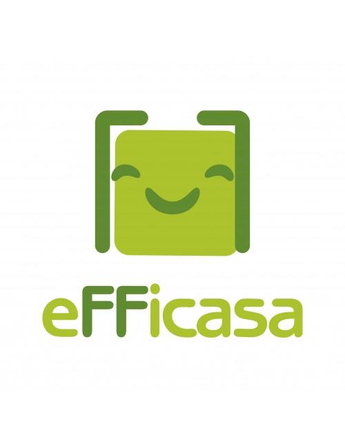 Logo Efficasa